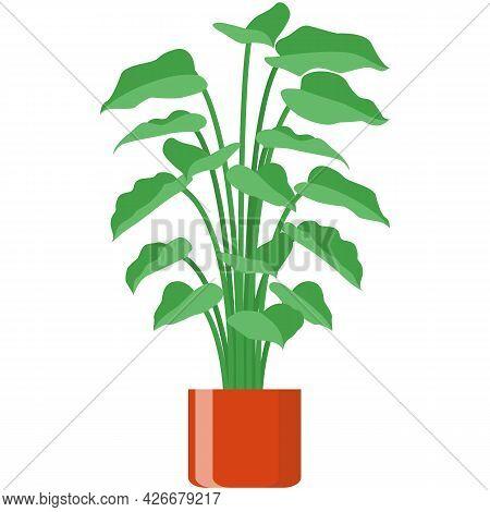 Flower In Pot Vector Plant Flowerpot Isolated Illustration