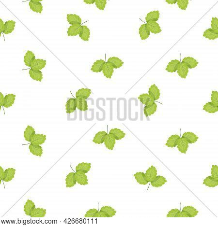 Colorful Pattern Of Leaves. Seamless Floral Pattern. Vector Illustration
