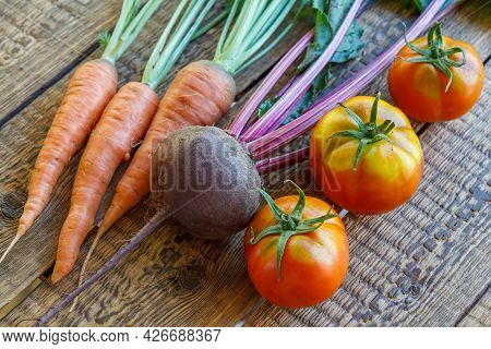 Carrots, Beetroot And Tomatoes Just Picked In The Gard.
