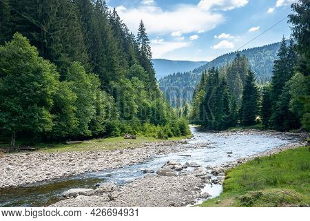 Mountain River Runs Through Forested Valley. Countryside Scenery On A Summer Day. Trees And Stones O