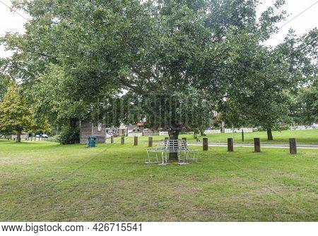 A Circular Bench Around The Trunk Of A Tree On Godstone Green, Godstone, Surrey