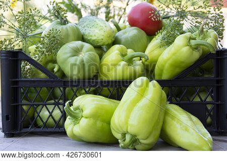 Vegetables In A Black Box Close-up. Fresh Peppers, Cucumbers And Tomatoes On A Wooden Background. Ha