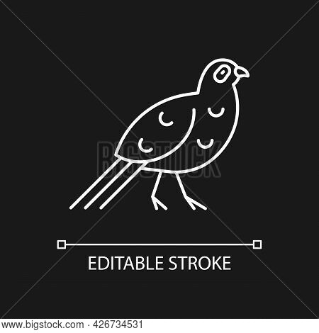 Bird Linear Icons Set For Dark And Light Mode. Mikado Pheasant. Exotic Forest Inhabitants. Thin Line