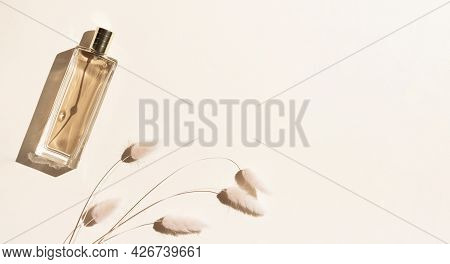 A Bottle Of Beige Perfume And Decorative Spikelets On A Sand-colored Background. Minimalistic Beauty