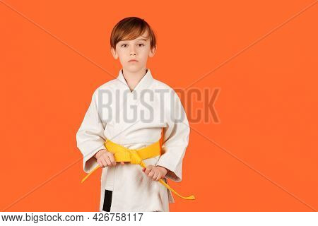 Boy Practicing Karate On Color Background, Copy Space. Kid Sport Concept. Healthy Sporty Childhood A