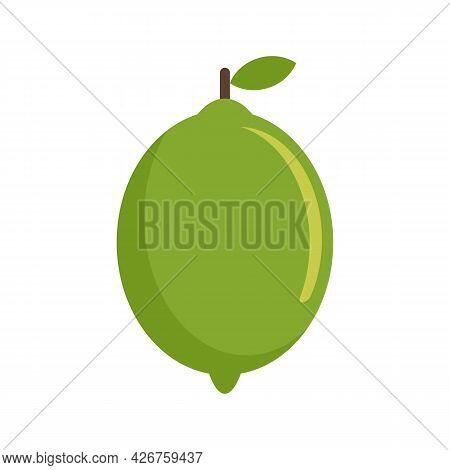 Lime Fruit Icon. Flat Illustration Of Lime Fruit Vector Icon Isolated On White Background