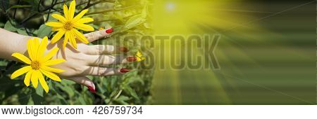 Fashion Female Hand With Summer Flowers In The Sunlight On Green Background. Creative Beauty Concept