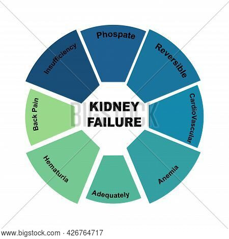 Diagram Concept With Kidney Failure Text And Keywords. Eps 10 Isolated On White Background
