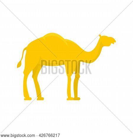Egypt Camel Icon. Flat Illustration Of Egypt Camel Vector Icon Isolated On White Background