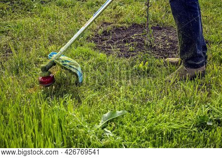 Process Of Cutting Green Grass With Trimmer In Garden. Rotating Head With Red Fishing Line Cuts Gras