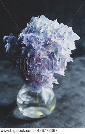Hydrangea Flower Bouquet. Abstract Beautiful Blue And Pink Flower Dark Background
