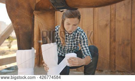 Female Caretaker Bandaging Horse Leg Outside The Stable During The Daytime. Dark Brown Injured Horse