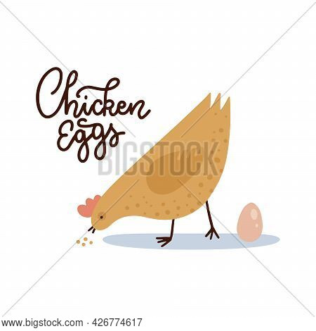 Chicken Eggs Banner Template. Farm Hen With Egg And Lettering Text. Cute Chicken Pecks Grain. Farmer