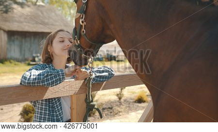 Young Girl Looking At Her Dark Bay Horse With Love. Expressing Her Love For The Stallion. Back View