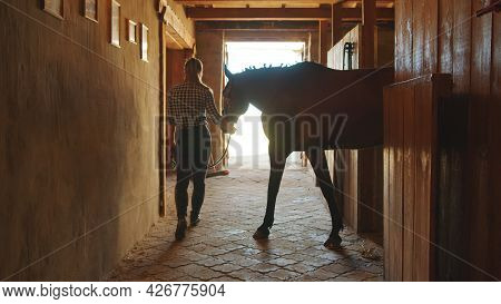 Female Jockey Taking Her Horse Out From The Stall In The Horse Stable. View Of Horse Stable During T