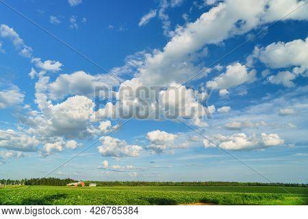 Big Skies Over Potato Fields In Rural Prince Edward Island, Canada.