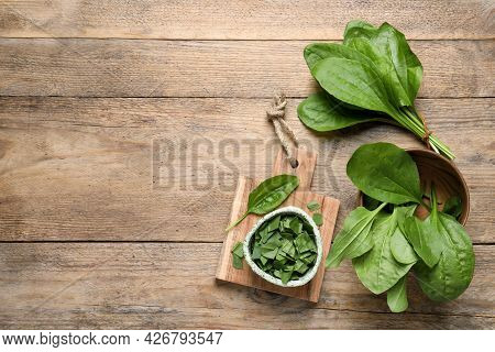 Broadleaf Plantain Leaves On Wooden Table, Flat Lay. Space For Text