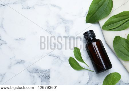 Bottle Of Broadleaf Plantain Extract And Leaves On White Marble Table, Flat Lay. Space For Text