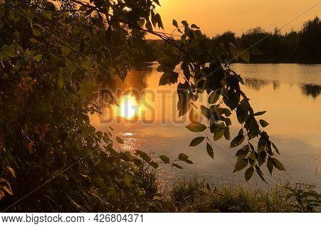 Golden Hour On Lake With Sun Shines Through Tree Foliage