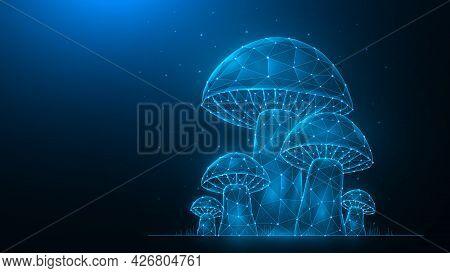 Polygonal Vector Illustration Of Mushrooms On A Dark Blue Background. Mushroom Glade Low Poly Design