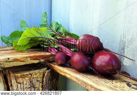 Bunch of fresh beetroots (red beet - Beta vulgaris) with green leaves.