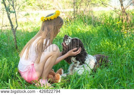 Blonde Little Girl With Dandelions Wreath And Teddy Bear Plays With Friendly Cocker Spaniel Dog In S