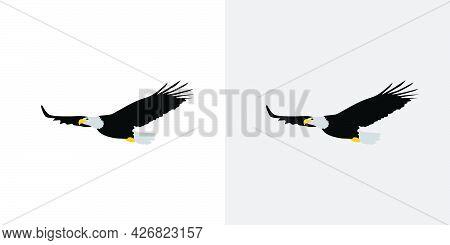 Elegant And Beautiful Eagle Illustration Vector Design