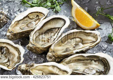 Raw Zeeland Creuses In Open Shells On Ice With Lemon