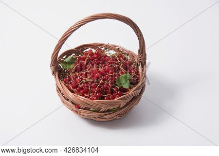 Wicker Basket With Red Currants Isolated On White Background. Healthy, Organic, Antioxidant, Nourish