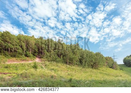 Natural Green Idyllic Background, Beauty In Nature. Aspen Forest, Hill, Trail And Flowering Meadow I