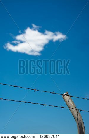Two Rows Of Barbed Wire And A Fence Post, With White Cloud And Blue Sky In The Background. Immigrati