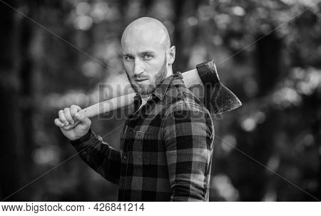 Man Checkered Shirt Use Axe. Brutal Male In Forest. Power And Strength. Lumberjack Carry Ax. Bald Wo