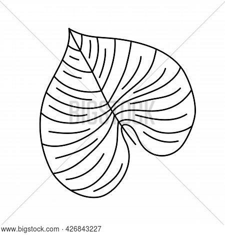 Single Monoline Vector Drawing Exotic Tropical Leaf Monstera Plant. Printable Decorative Houseplant