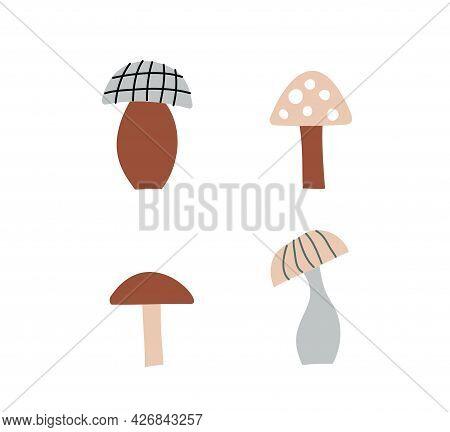 Mushroom Set Of Vector Illustrations Isolated On White. White Mushroom, Chanterelles, Honey Agarics,