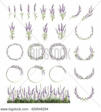 Large Set Of Lavender Sprigs, Wreaths And Frames. Lavender Field.