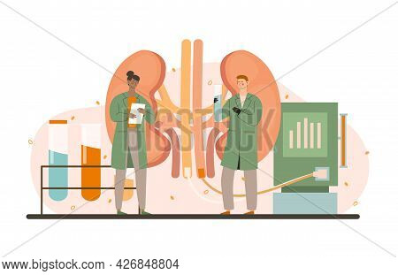 Procedure For Kidney Treatment Concept. Doctors Analyze The Condition Of The Patients Kidneys And Pr