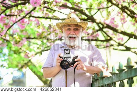 Over Floral Background. Old Man Watch Young Plants. Photographer Man Take Sakura Blossom Photo. Cher