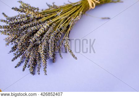 Fresh Lavender Bouquet On Purple Background With Copy Space.