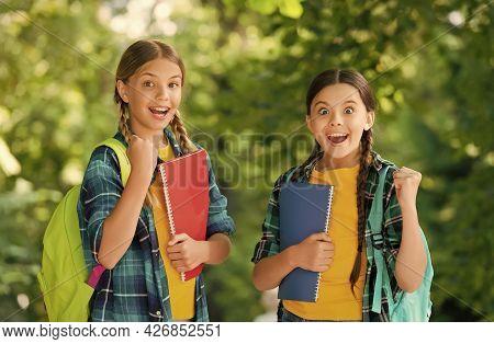 We Did It. Energetic Kids Make Winning Gestures Outdoors. Happy Winners In Casual Style. Scholarship