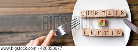 Ghrelin And Leptin Hunger Hormons. Diet And Energy