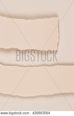 Two Blank Horizontal Pieces Of Torn Paper On Blank Beige Background. Abstact Monochrome Earthy Color
