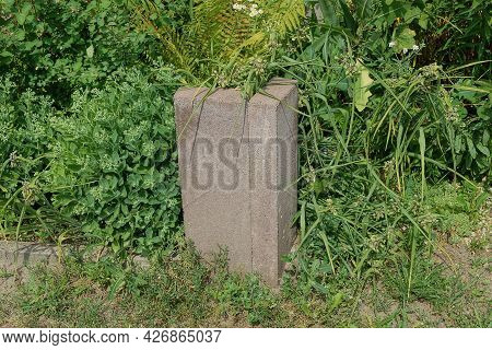 One Brown Concrete Border Post On The Street Overgrown With Green Vegetation And Grass