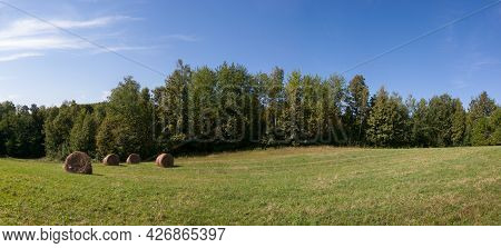 Hay Roll Bales In Field Against Forest During Sunny Summer Day With Clouds In Sky, Cattle Fodder Ove