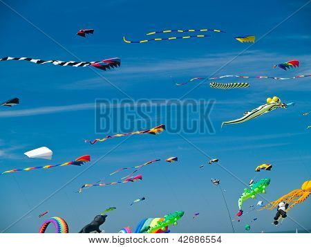 Various Colorful Kites Flying In A Bright Blue Sky At The Long Beach Kite Festival