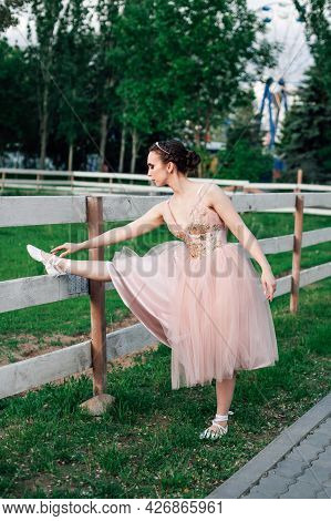 A Young Ballerina In A Pink Dress Does Stretching Exercises In A Park With Green Grass And Trees At