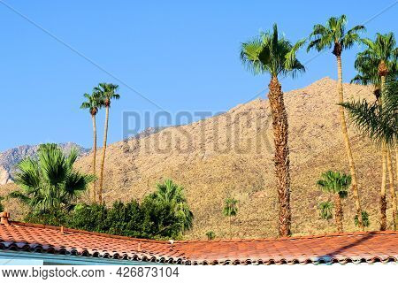 Spanish Colonial Style Rooftop Tiles On A Historical Building Besides Palm Trees With Arid Mountains