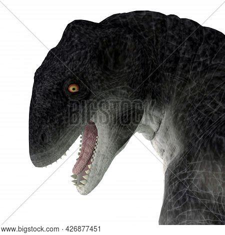 Delphinognathus Synapsid Head 3d Illustration - Delphinognathus Was A Synapsid Herbivorous Animal Th