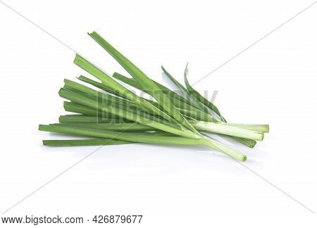 A Spring Onion Isolated On White Background