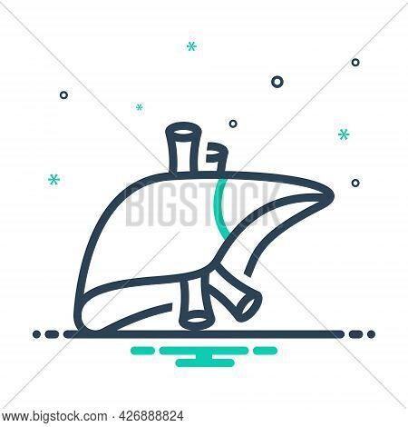Mix Icon For Liver Anatomy Biology Healthy Protection Surgery Tissue Medical Organ Biology