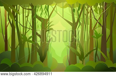 Jungle Illustration. Foggy Road. Dense Wild-growing Tropical Plants With Tall, Branched Trunks. Rain